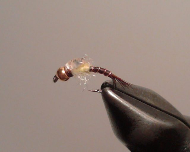 Pale Morning Dun Emerger Nymph fly pattern