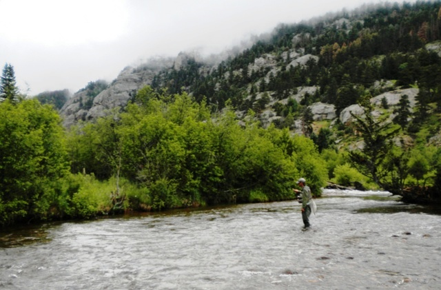 Fly Fishing in the Rocky Mountain National Park