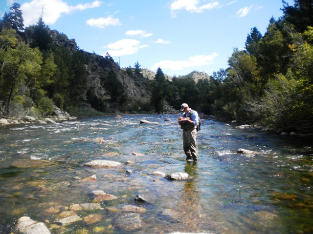 Our Colorado Beginner Fly Fishing Class lets you learn how to fly fish on the water.