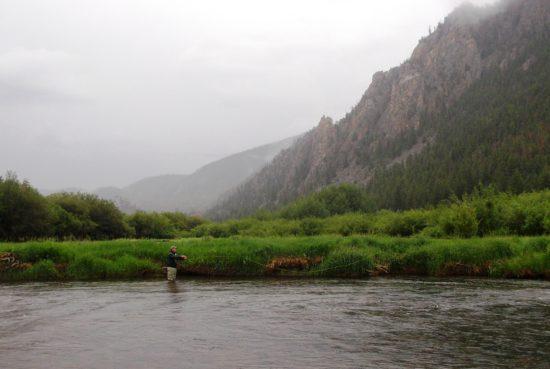 Cache La Poudre River Fly Fishing