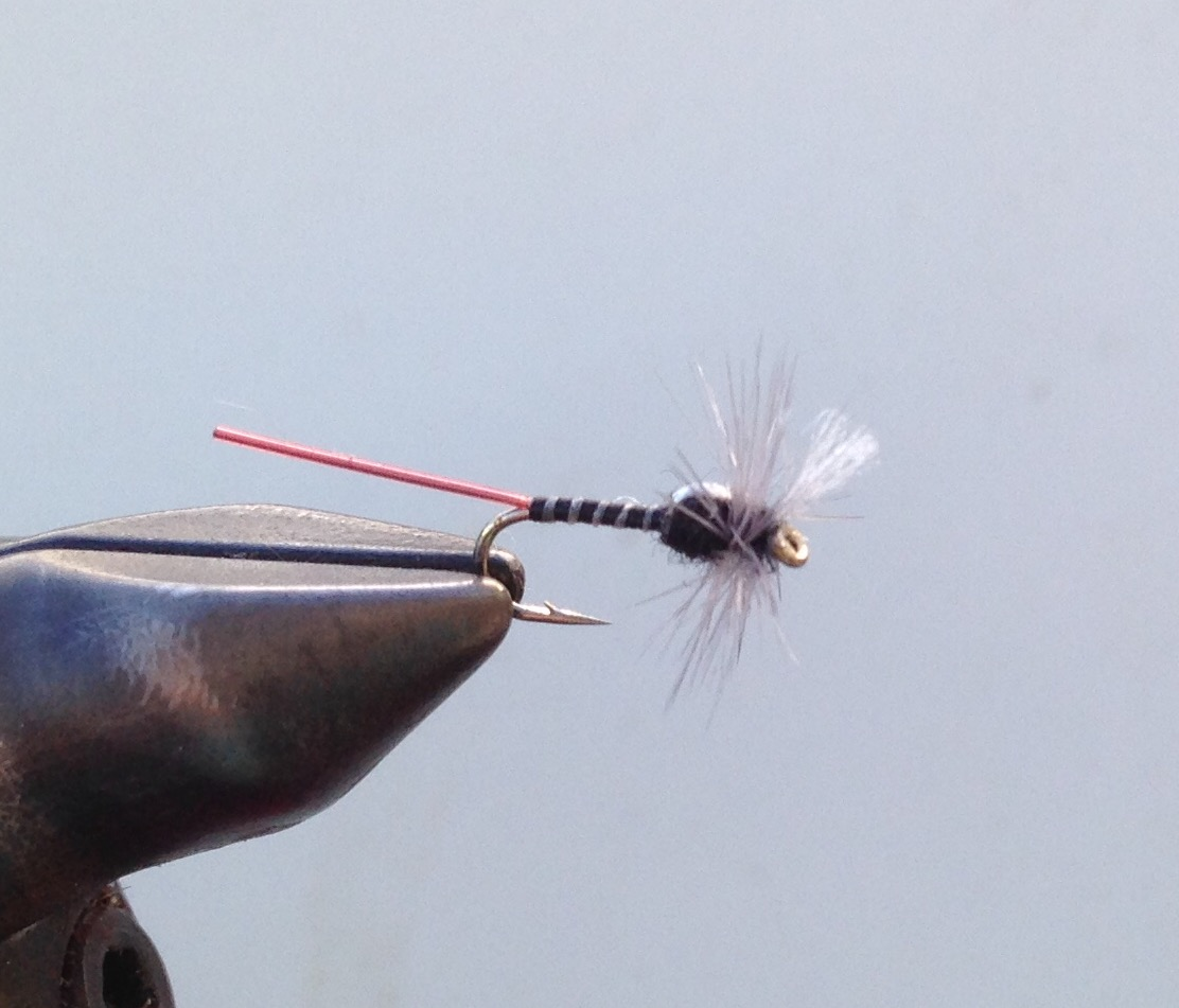Dry Fly midge pattern for angling on the Cache La Poudrer