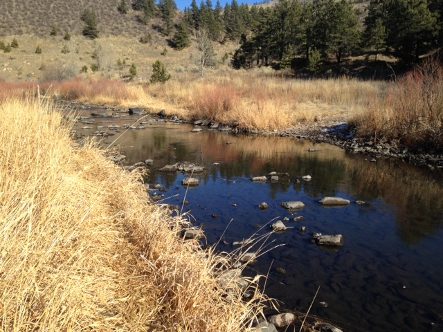 Low Flows on the Poudre
