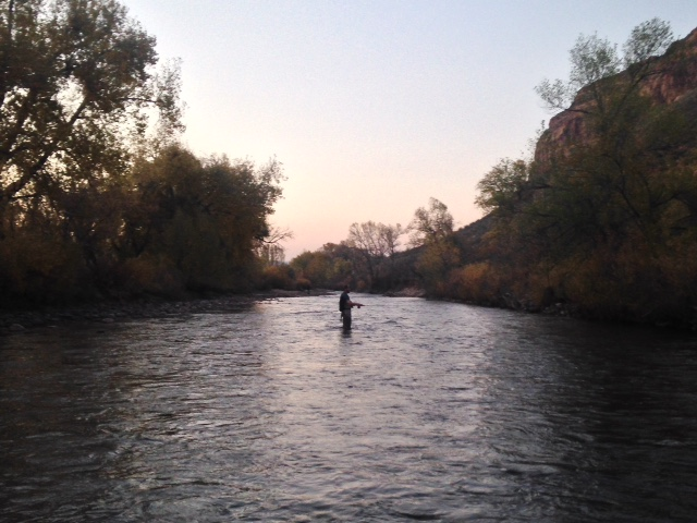 Our Cache La Poudre Fly Fishing Guides report great fly-fishing in Fort Collins